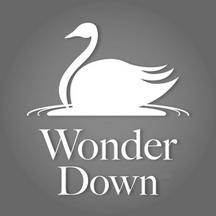 WONDER DOWN