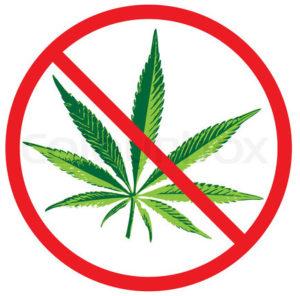not marijuana
